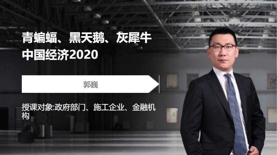 青蝙蝠、黑天鹅、灰犀牛-中国经济2020